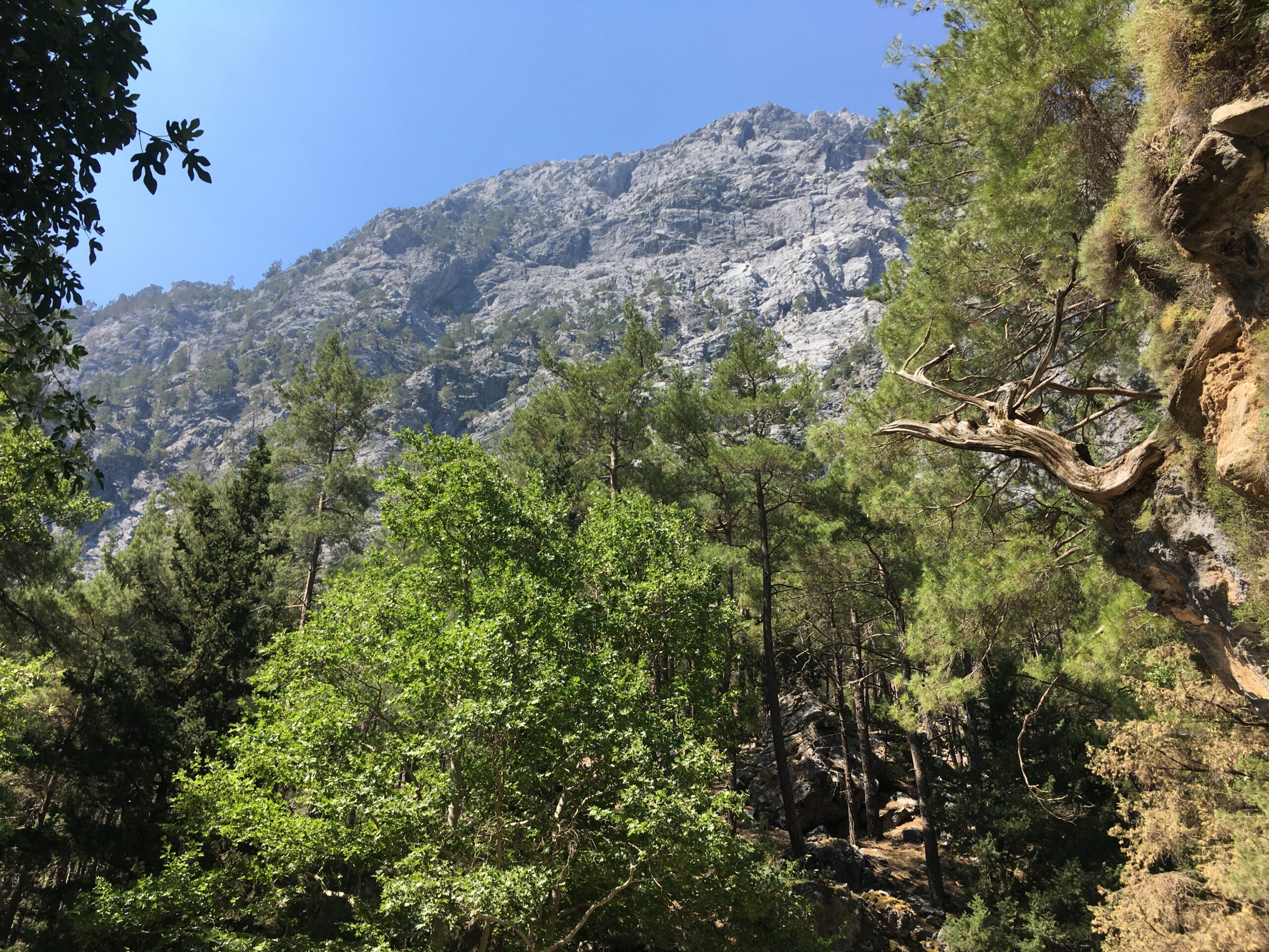 Vacation in Chania- Hiking in Chania- Platanias Ariston